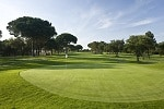 Golf Clubs in Walsall - Things to Do In Walsall